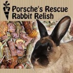PRrabbit_feed_square